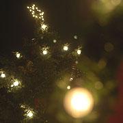 Der Weihnachtsstern erinnert an den Stern über Bethlehem, von dem die Bibel kündet.