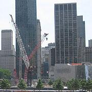 DIe Bäume gehören zur Gedenkstätte, die am 11. September im Beisein von Angehörigen der Opfer eröffnet wird: Ground Zero in New York.