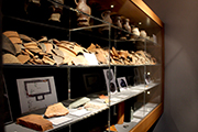 Viele kleinteilige Funde gibt es in der Antoniterkirche zu sehen.