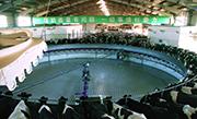 Melk-Karussell in China. Foto: Eikon und Miramontefilm, Martin Rattini