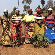 Landwirtschaftliches Wissen, das durch Kolonialismus und Kriege verloren ging, soll in Muku wiederbelebt werden.