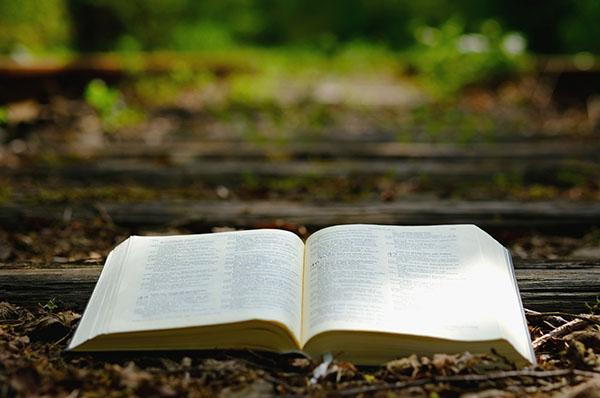 Mit einer geistlichen Provianttüte im Gepäck können Spaziergängerinnen und Spaziergänger Gott bei einem Weggottesdienst durch den Wald in Altenkessel begegnen