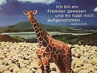 Plakatmotiv der VEM zum Menschenrechtstag 2007.